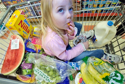 Girl in grocery cart