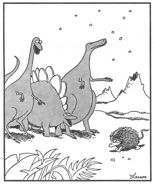 Dinosaurs porcupine.017